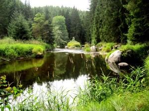 BB-Kamp-wie-ein-Teich-WEB-IMG_5213